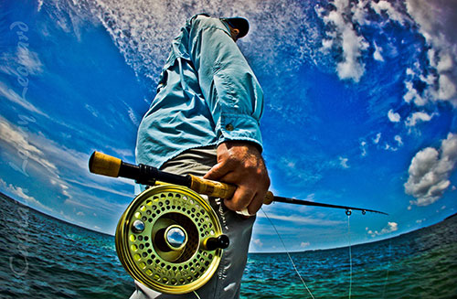 Key west flats fishing calendar bonefish permit tarpon for Fish monster key west